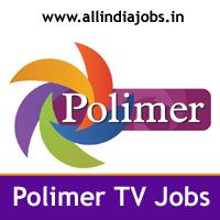 Polimer TV Jobs