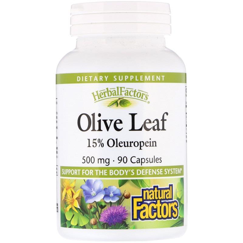 Natural Factors, Оливковый лист, 500 мг, 90 капсул