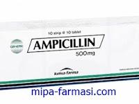 Ampicillin - Kegunaan, Dosis, Efek Samping