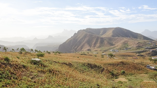 A bit more green than other places in Cape Verde
