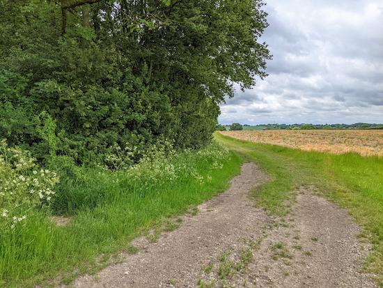Heading S on Anstey footpath 13