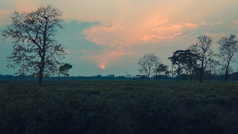 Sunset Background Free Stock Images