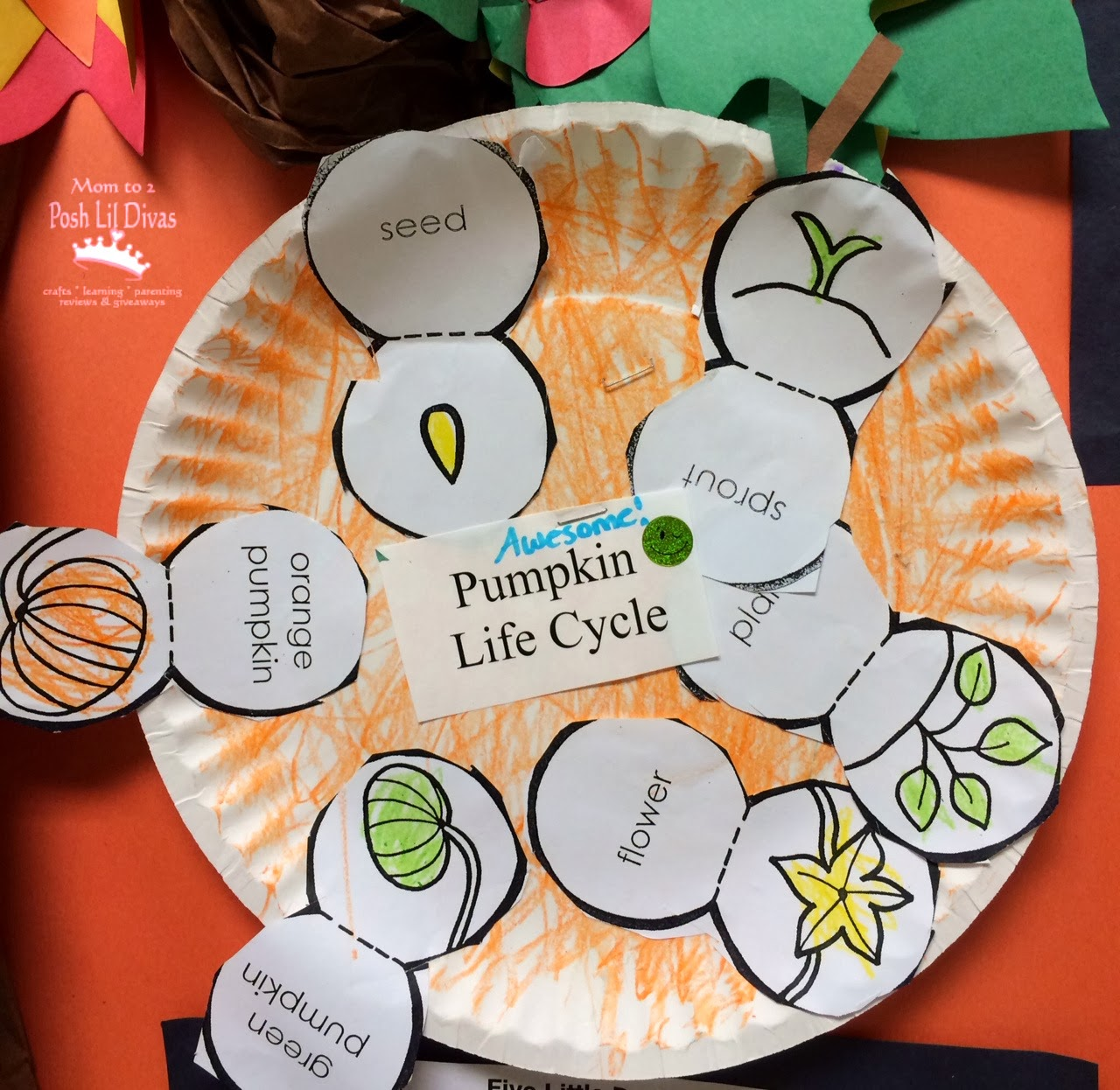 I Used The Life Cycle Printable Cards From A To Z Teacher