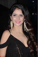 Kashish Vohra at Rogue Movie Audio Launch ~  (2).JPG