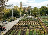Pengertian, Ciri, Sistem dan Persyaratan Kawasan Agropolitan