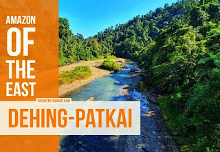 9 Reasons why You should save Dehing-Patkai, The Amazon of The East