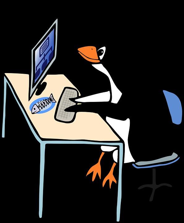 ver configuracion ip en linux