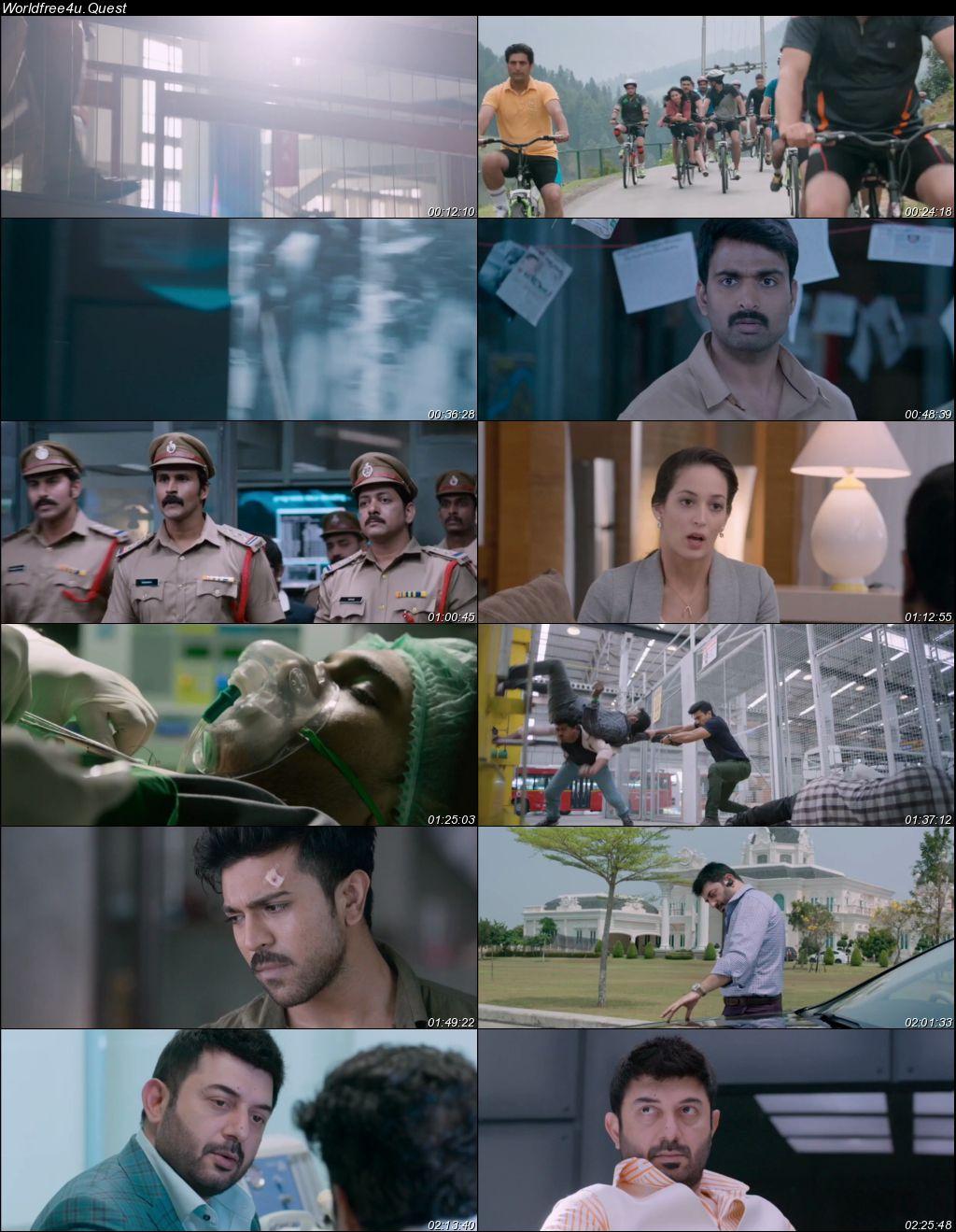 Dhruva 2016 Hindi Dubbed Movie Download || HDRip 720p