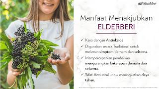 Life Shake Elderberry Shaklee