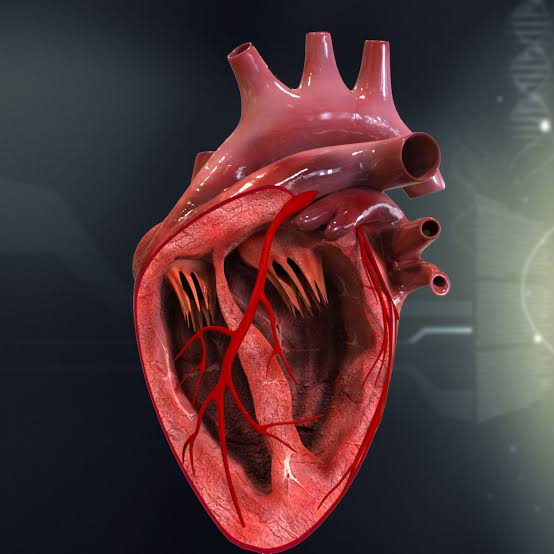 New drug inventions to restore damaged heart tissue
