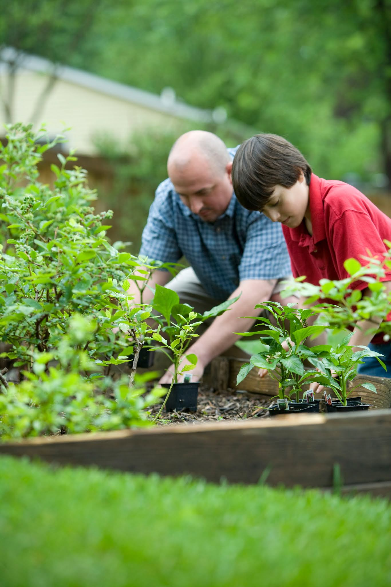 Things You Need To Keep Your Garden Clean