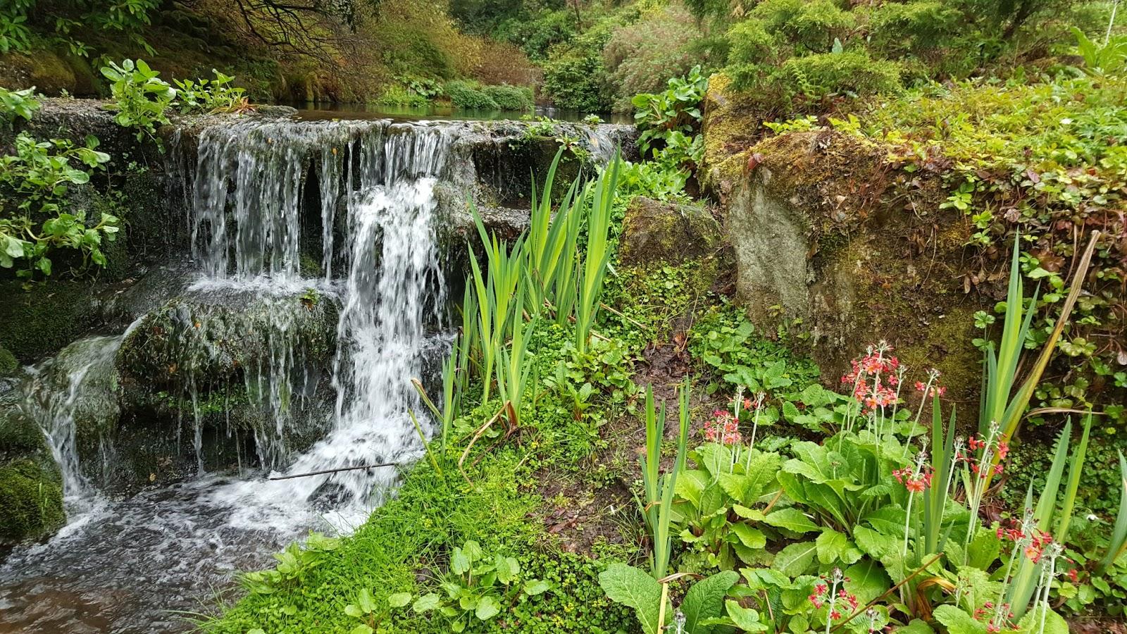 Hortibus voyage bottin mondain ch teaux et jardins d cosse for O jardins d eglantine