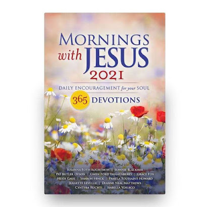 A book cover showing a field of wild daisies with majestic sky backgound stating Mornings with Jesus 2021