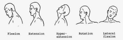 ROM leher dengan gambar
