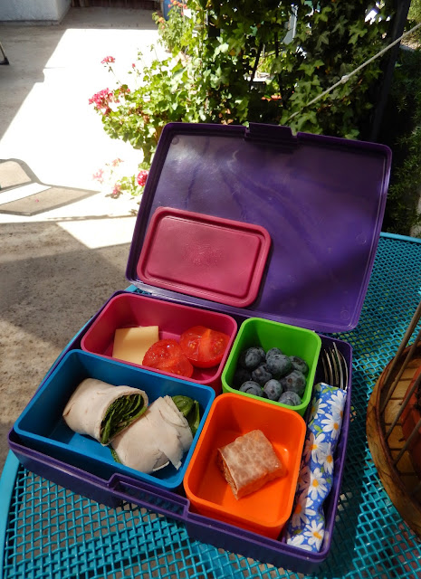 Weight Loss Surgery Healthy Lunchbox