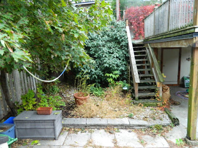 Upper Beaches Toronto Fall Garden Cleanup Before by Paul Jung Gardening Services--a Toronto Gardening Company