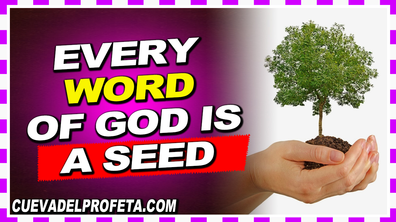 Every Word of God is a Seed  - William Marrion Branham