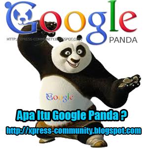 Apa itu Google Panda ?