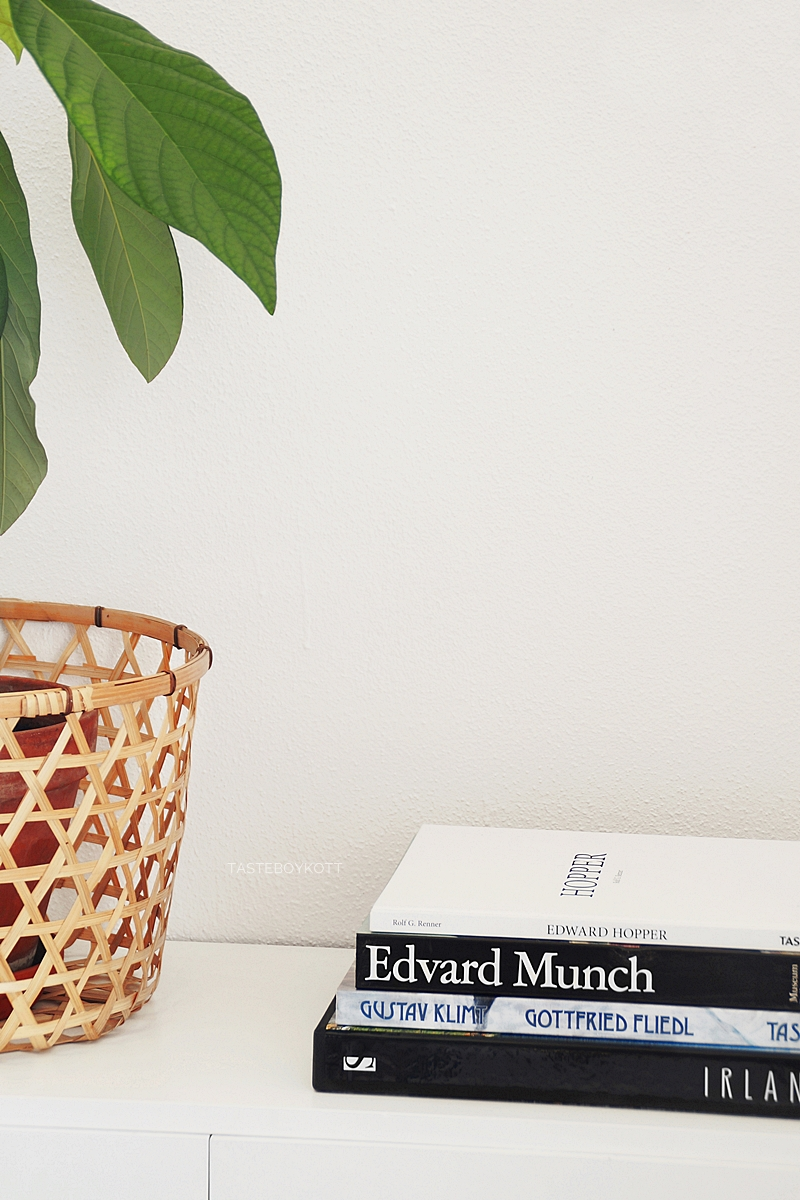 modern simple urban jungle summer decoration with avocado plant, basket and books