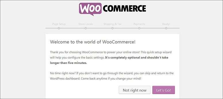 Pesan sambutan dari WooCommerce