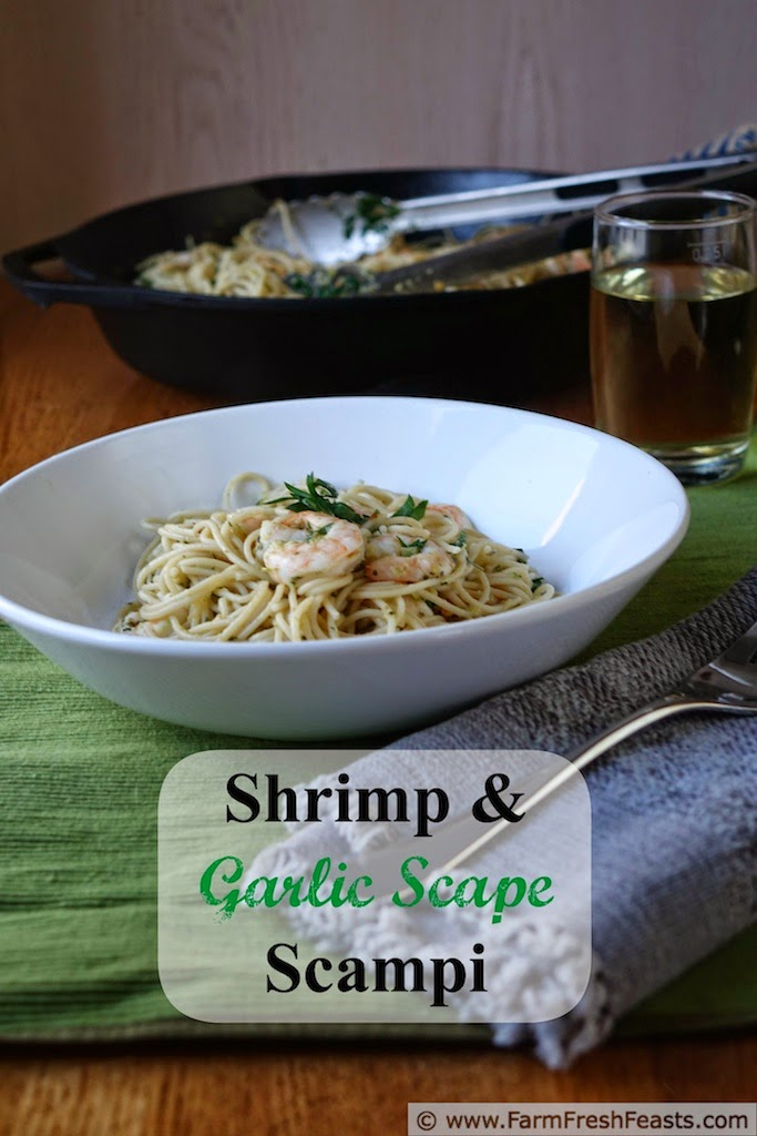 Shrimp, garlic scape pesto, and parsley in a wine/butter/lemon sauce over pasta.  Seasonal eating. The high falutin' way.