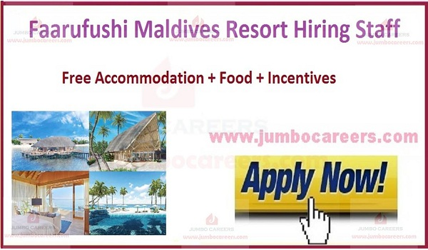 Maldives jobs with benefits,