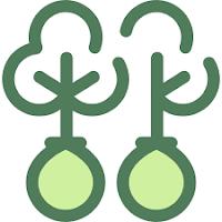 Hợp đồng trồng rừng giữa công ty với hộ gia đình, cá nhân