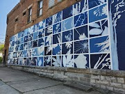 Wall Flowers (and Other Fun Designs) around Buffalo