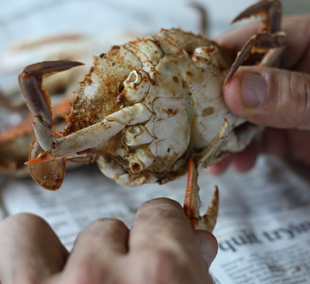 crackin crab cleaner