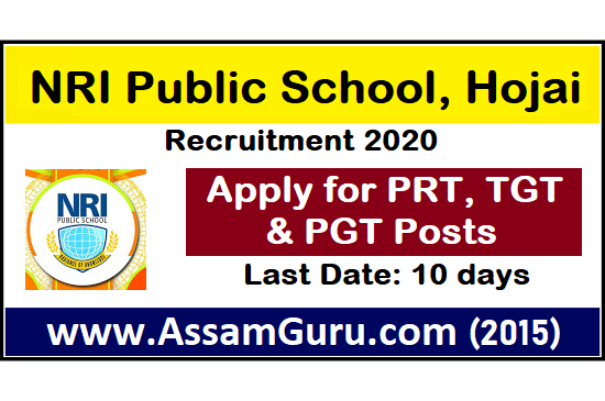 NRI Public School, Hojai Job 2020
