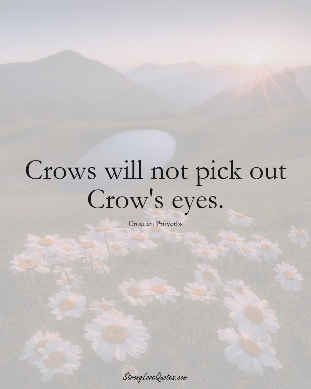 Crows will not pick out Crow's eyes. (Croatian Sayings);  #EuropeanSayings