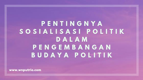 apa itu sosialisasi politik dan budaya politik