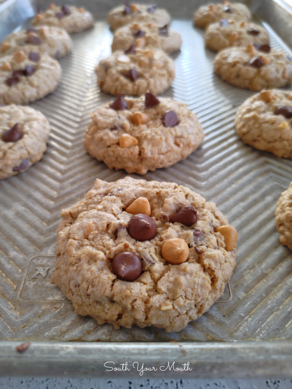 Thick, Soft & Chewy Oatmeal Cookies! A recipe for tender, thick, soft, chewy oatmeal cookies (and how to achieve those three qualities!) perfect with chocolate chips, butterscotch morsels, raisins and/or nuts – just add what you like best!