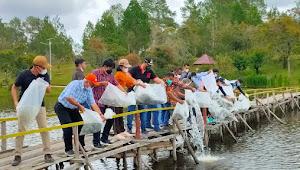 Vandiko Gultom dan KSPS Tabur Puluhan Ribu Benih Ikan di Aek Natonang Samosir