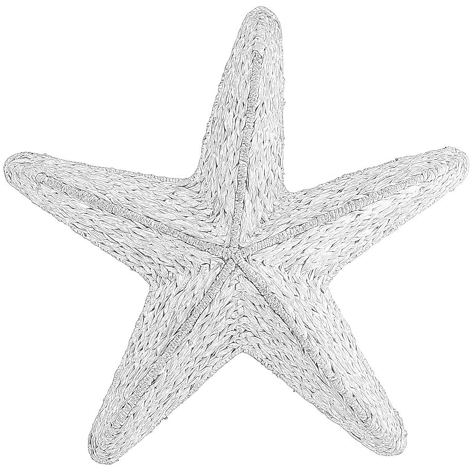 Coloring pages starfish sea stars coloring pages for Sea star coloring page