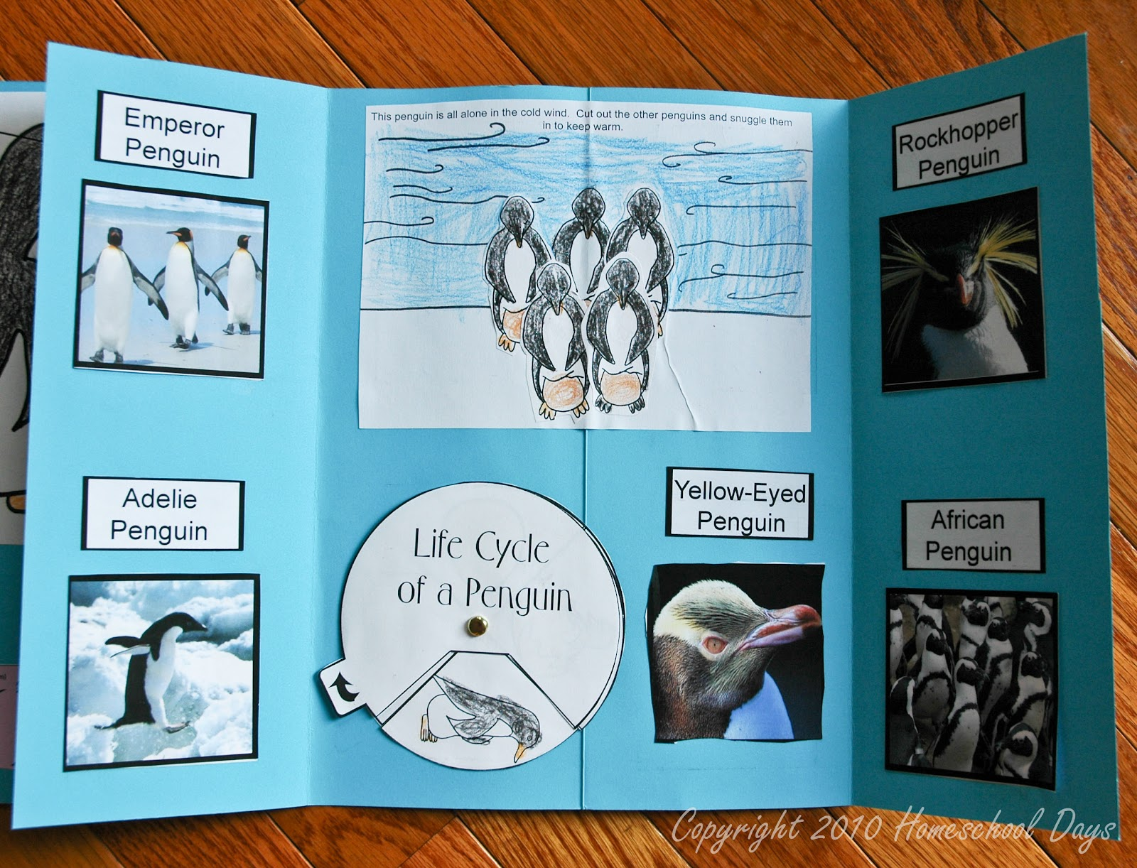 Homeschool Days Lapbook
