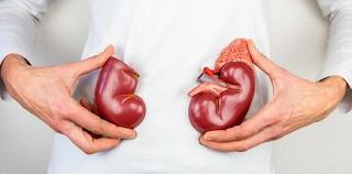Cara Mendapatkan Dokter Spesialis Penyakit dalam Ginjal Hipertensi di Bekasi yang Terpercaya