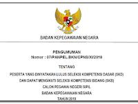 Surat Edaran Panpel CPNS Nomor : 07/PANPEL.BKN/CPNS/XI/2018 Tentang Pelaksanaan SKB