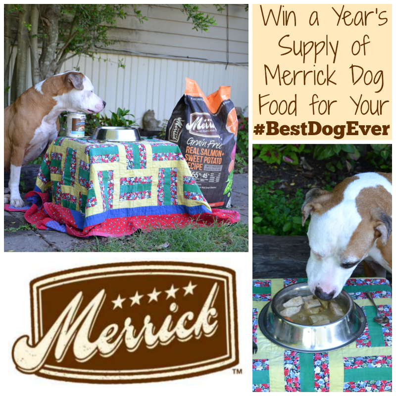 Natural dog food from Merrick