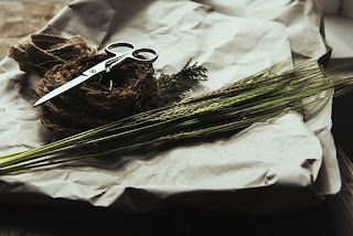 Larangan Memotong Kuku, Kulit, Rambut Orang yang Berniat Qurban