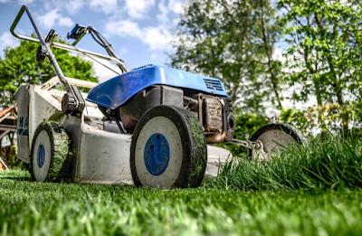 Cara Sederhana Tanam Rumput Di Taman