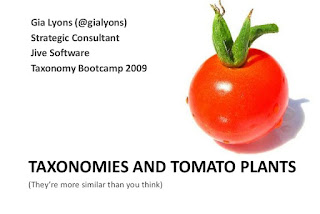 TAXONOMY OF TOMATO