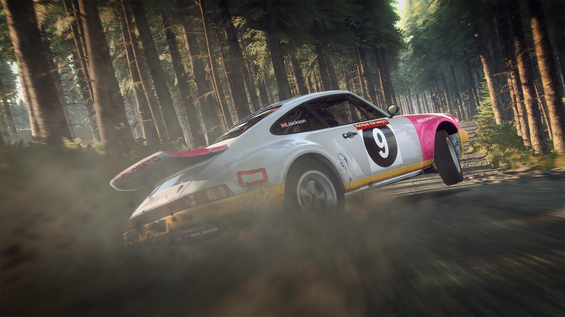 dirt-rally-2.0-pc-screenshot-02