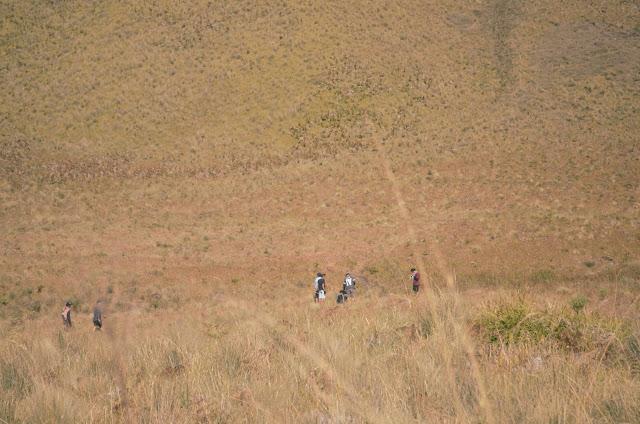 Padang Savana Gunung Semeru