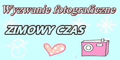 http://misiowyzakatek.blogspot.com/2016/01/zimowy-czas.html