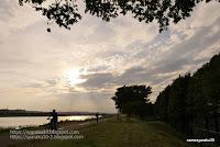 多摩川沿いのサイクリングロードの写真
