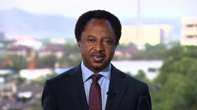 Why Buhari mustn't exclude Niger Delta, Igbo, middle-belt from key appointments – Shehu Sani