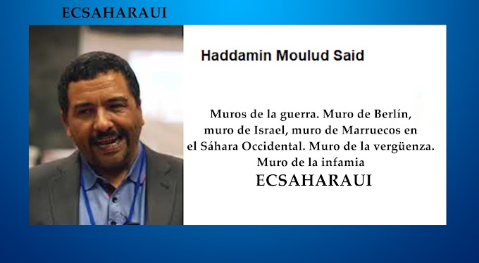 NN.UU y su perversión del lenguaje en el Sáhara Occidental.