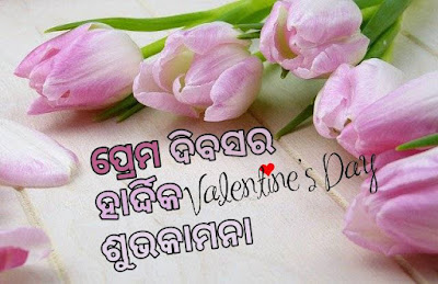 Happy valentines day odia