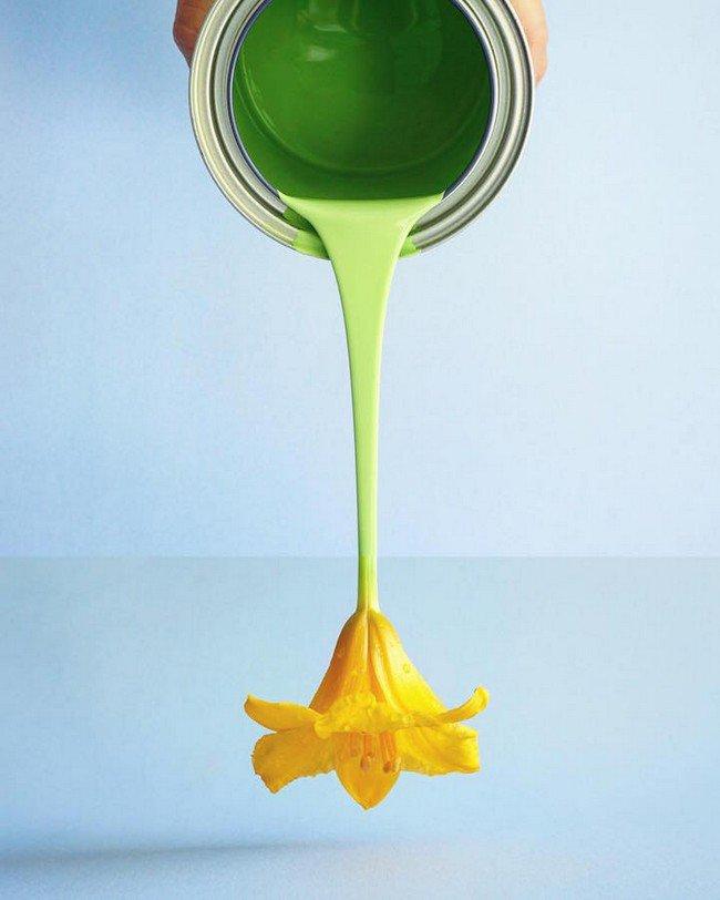 fotos combinadas de forma muito criativa 14 - 15 fotos combinadas de forma super criativa